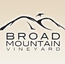 Broad Mountain Vineyard