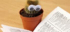 Cactus-Pot-Book-Reading-Study-Education-