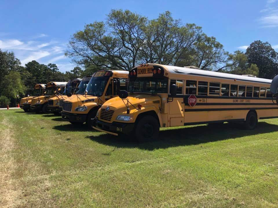 School buses parked in a field.