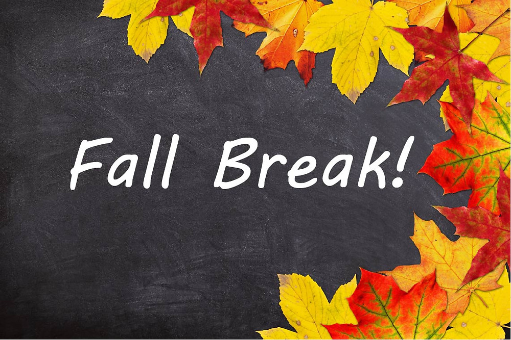 Fall break graphic of leaves on a chalkboard