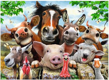 pieces-xxl-selfies-des-animaux-de-la-fer