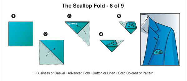 The-Scallop-Fold.jpg