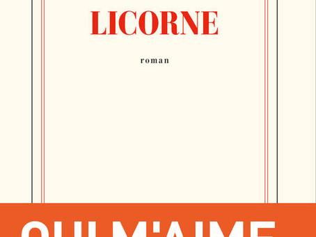 « Licorne », de Nora Sandor