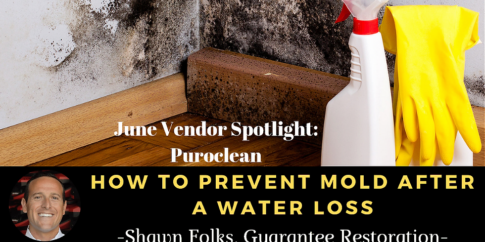 Mold Prevention after Water Loss