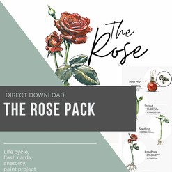 The Rose Pack