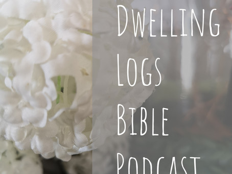 Psalm 91 (Bible Podcast)