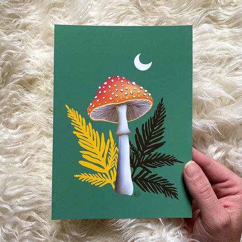'Zelda' Print // 5X7