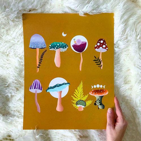 Garden of Mushrooms Print || 11x14