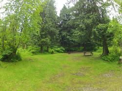 Campsite in spring