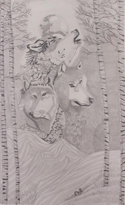 21.Unos lobos en las montañas