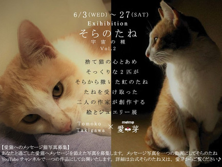 6/3(wed)~27(sat)そらのたね展vol.2