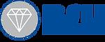 logo-bsu-web.png
