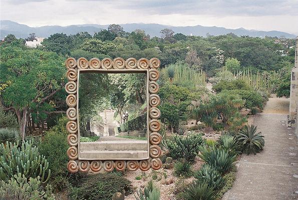 Cactus garden - swirly frame.jpg