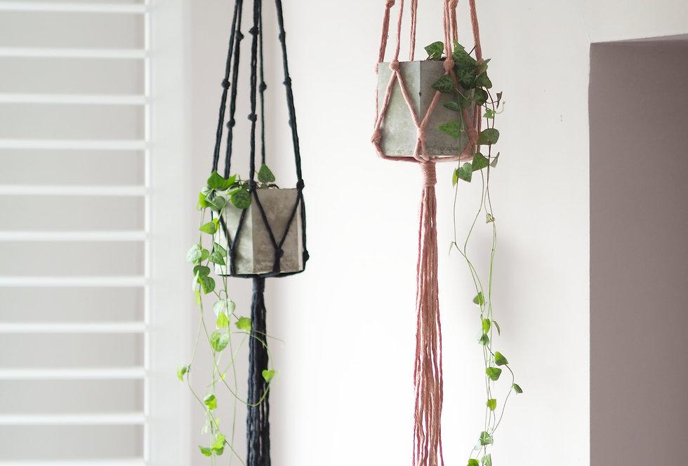 Popcorn-Knot Hanging Plant Bundle