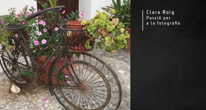 Clara-3.png