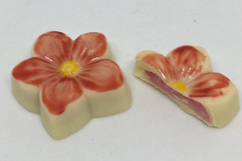 Raspberry Blossom