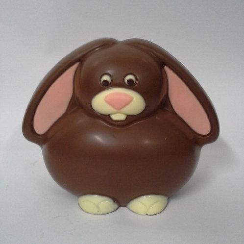 Lop-Eared Bunny