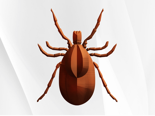 Comprehensive Lyme & Co-Infections Test