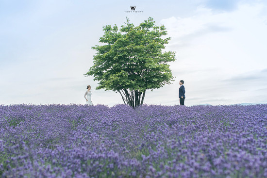 VisionWedding_北海道_1.jpg