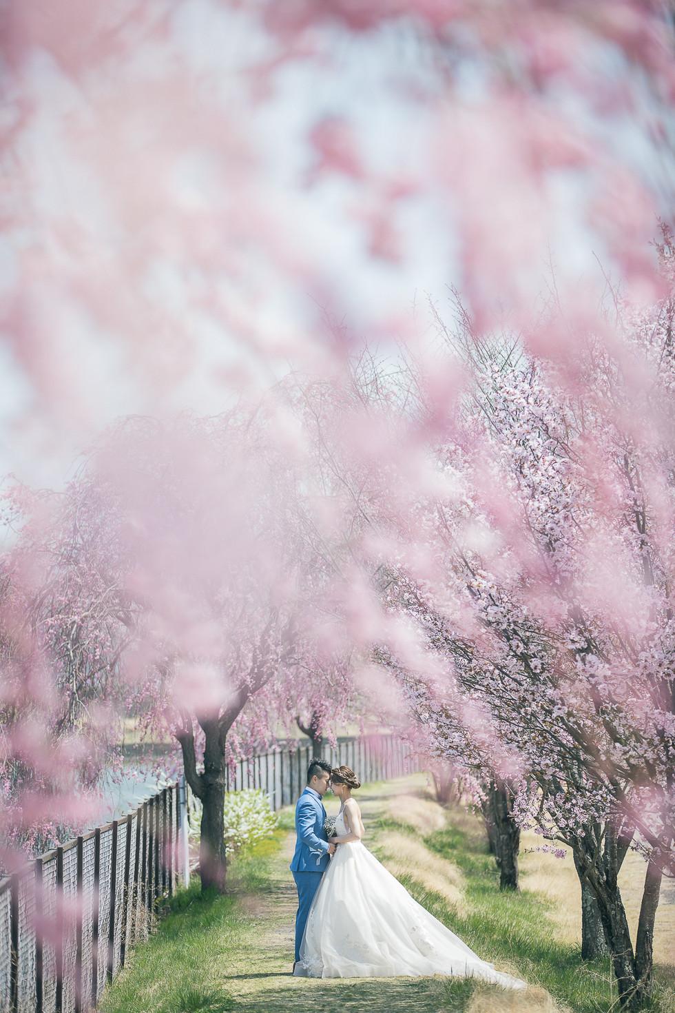 Japan_Prewedding_VisionWedding_Sakura-13