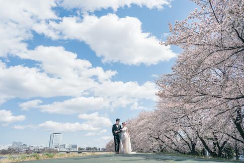 Japan_Prewedding_VisionWedding_Sakura-01