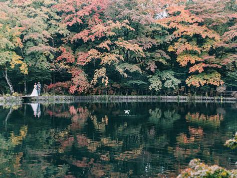 日本紅葉婚攝Japan Maple Leaf Pre-Wedding Photo