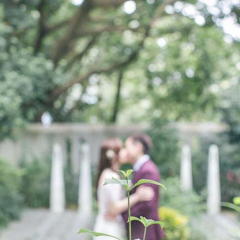 Hong Kong Wedding Day photo