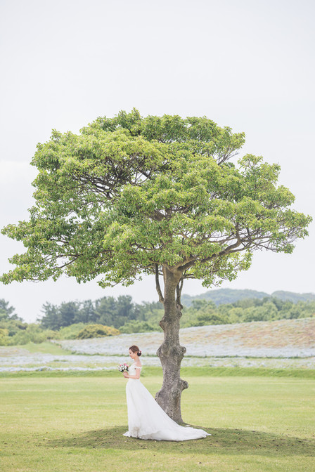 Hokkaido Prewedding