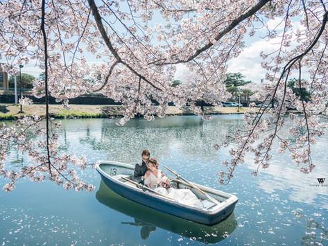 日本婚紗拍攝熱點 - 4季變化+7大熱門拍攝點