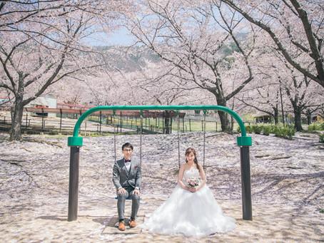 日本櫻花婚攝 & 香港婚禮拍攝 by Vision Wedding