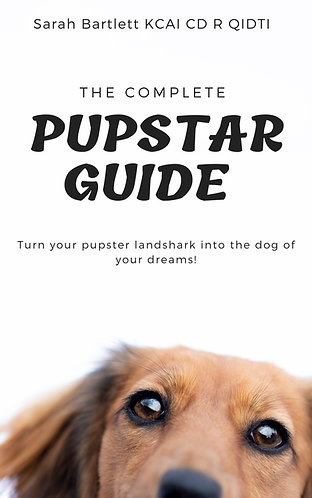 The Complete PupStar Guide Pre- Order
