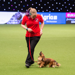Sarah & Ripple at Crufts