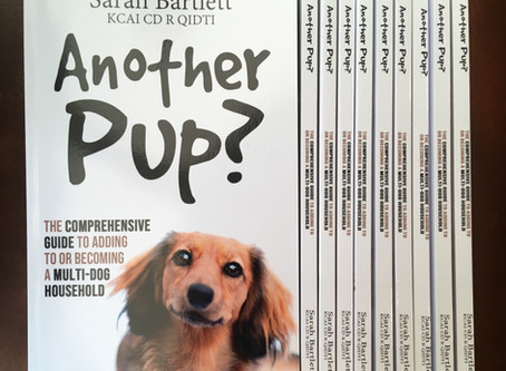 Book Launch!                                                                     Another Pup?