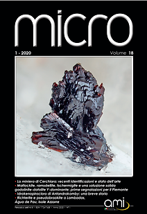 copertina micro 2020_1.png