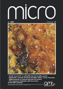 MICRO_2021-2 COVER.png