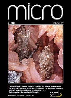 micro 2021-1_copertina.png