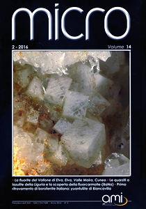 Micro2-16.jpg