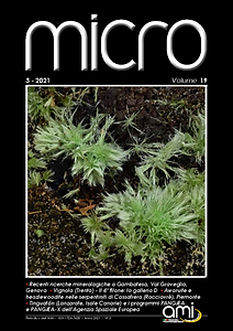 MICRO_2021-3 Cover.png