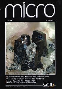 Micro 1.14_COVER.jpg