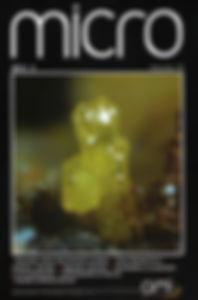 Micro3.2013_COVER.jpg