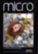 Micro 3 2015012.jpg