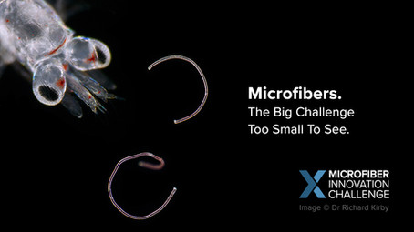 Techstyler + Conservation X Labs: Unearthing fashion's innovative microplastic solutions