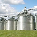 silos e grãos.jpg