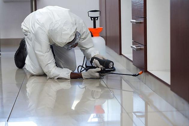 Canva - Pest control man spraying pestic
