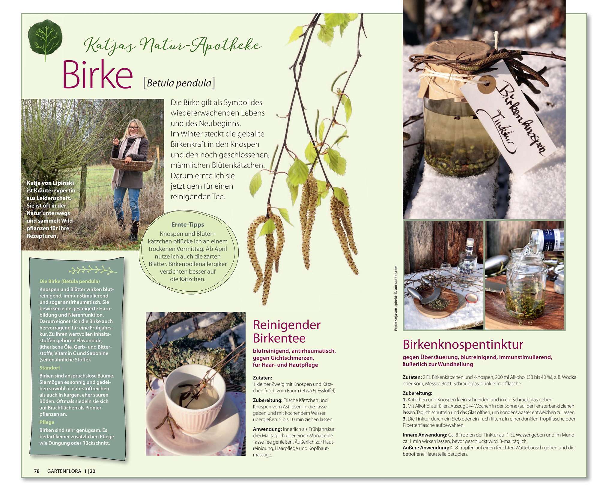 Katjas Natur-Apotheke 01 20 GartenFlora.