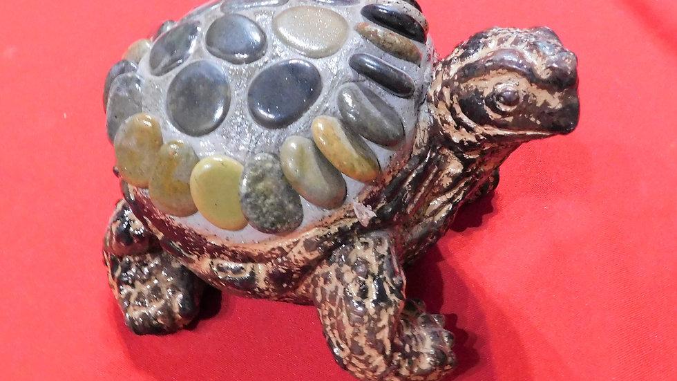 Rock Turtle Small