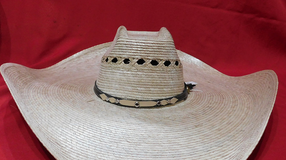 Large Mexican Hat