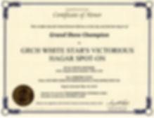Hagar UKC GRCH certificate076.jpg