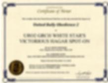 hagar uro2 certificate109.jpg