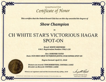 Hagar UKC CH certificate066.jpg